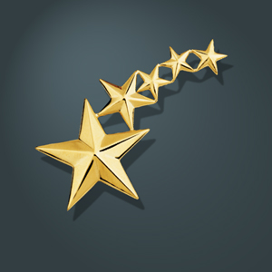 Five Star Pin