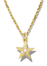 Star Pendant Faceted w/diamonds