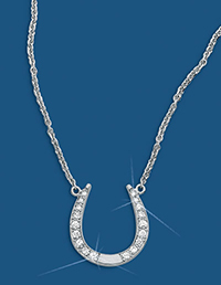 Horseshoe Diamond Necklace 17