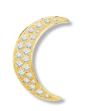 Crescent Moon Diamond Pin