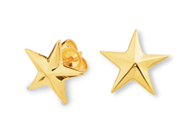 Star Earrings Faceted